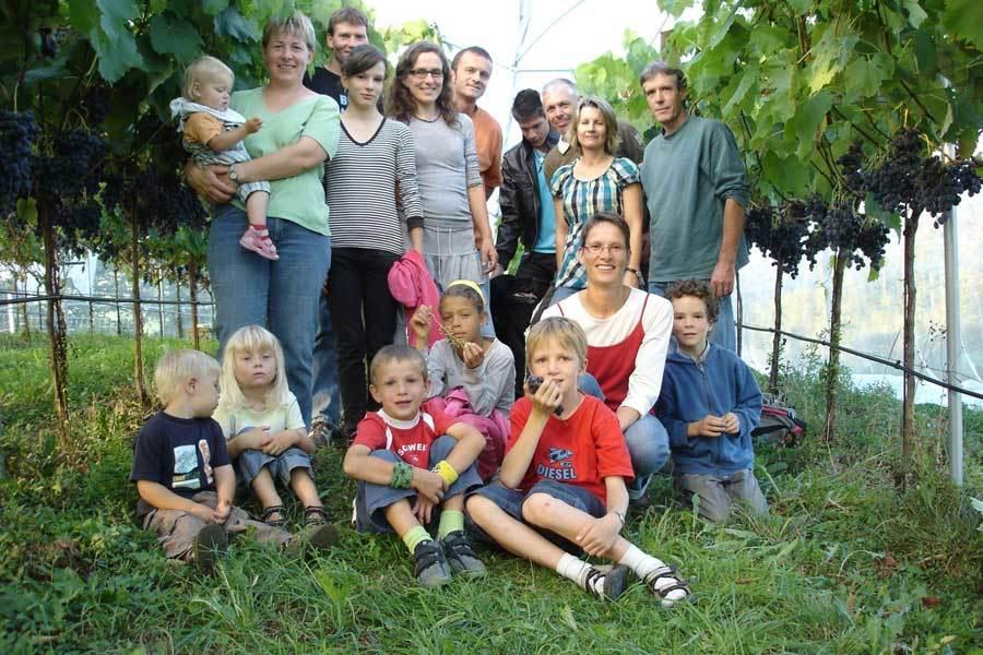 Biotafeltrauben aus dem Aargau